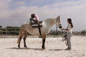GRS gymnastique souplesse dos contorsion Jandira cheval équitation éthologie