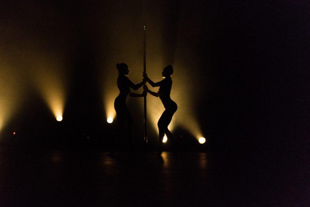 Photographe Pole Dance Virginia et Mélanie Danh soeurs binome doublettes double9ème Compétition Française de Pole Dance championnat championne spectacle show scène