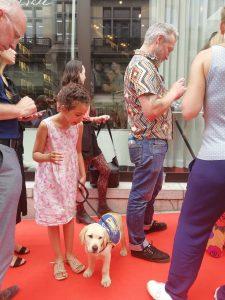 chien guide d'aveugle tapis rouge peter lindberg bruxelles