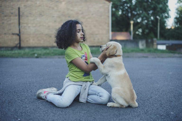 chien enfant photographe
