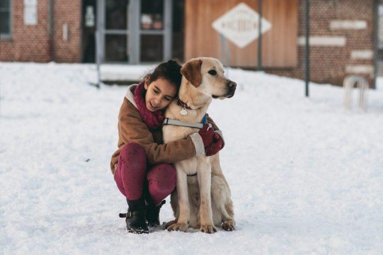 chien enfant éducation photographe
